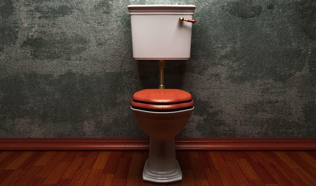 toiletsæde